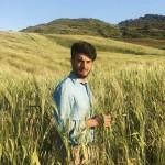 Mulinum è una start up agricola fondata da Stefano Caccavari