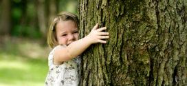 Biofilia: l'amore per gli alberi ci salverà