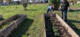 DelSud: Maria & Antonella e la loro scommessa sul biologico in Puglia
