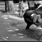 il gesto generoso di un senzatetto