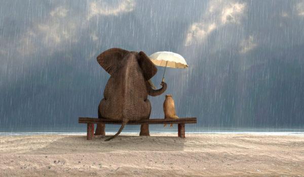Praticare la gentilezza rende persone migliori: ecco qualche consiglio su come fare.