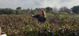 "Emanuela Conversano, l'imprenditrice filosofa ""innamorata"" di Karl Marx"