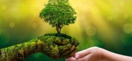 Ecologisti si nasce o si diventa?