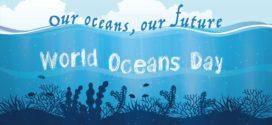 """Oggi è la Giornata Mondiale degli Oceani: ecco le sei """"paladine"""" del mare"""