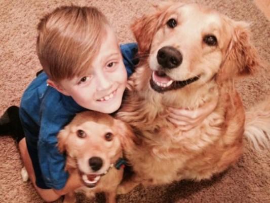 Ethan Katz aiuta i cani abbandonati