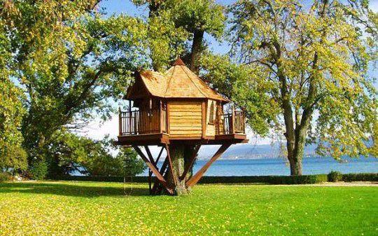 Davide torreggiani realizzo per voi il sogno di una casa - Come costruire una casa sull albero ...